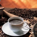 中国で人気のジャコウネコのコーヒー