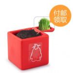 中国某サイトのノベルティの盆栽を育ててみた結果