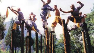 中国武術の杭の上で闘う訓練