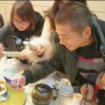 中国にもいる 出てきた料理を撮りたがる人たち