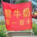 中国で自信のありすぎる路上の新鮮ミルク売り