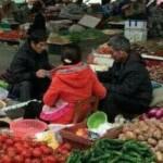 野菜市場の人のお仕事よりたいせつな事