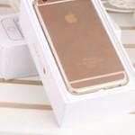 中国のiPhone6のイヤホンジャックに あるものを入れてみたら