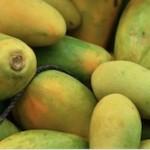 中国のマンゴーやさんのPOPの文句の妙な説得力がおもしろい