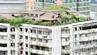 中国の高層住宅のカサ増し好き