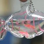 動物虐待の非難まで出る ぜんぜん実用的じゃない生きてる金魚のキーホルダー