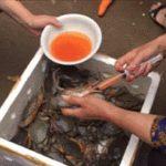 中国のおばさんが蟹に注射を打っている動画が話題になってる