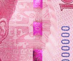 renminbi2015g