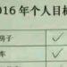 中国のネットユーザーが2016年に達成できたことがコチラ