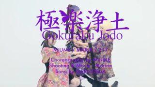 中国の人が「極楽浄土」で踊りまくってる