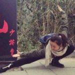 結構な強さの中国のカンフー女子