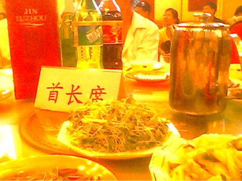 shouzhangC