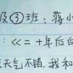 中国の小学校の課題作文の採点