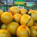 知っておくべき中国で果物を買う時の注意点