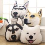 人気の犬の頭クッションで面白画像をアップする中国の人