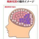 """""""脳内メーカー""""をパクった中国版脳内メーカー:你的脑内图"""