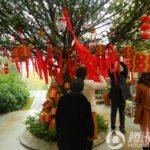 中国の聖地では願いを込めて赤い帯をくくりつけます。