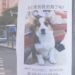 中国の飼い犬自慢の貼り紙がさらにパワーアップしていた